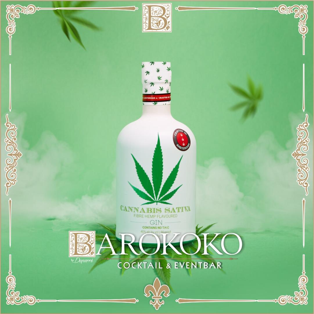 Cannabis Sativa Gin im BARokoko in Gotha